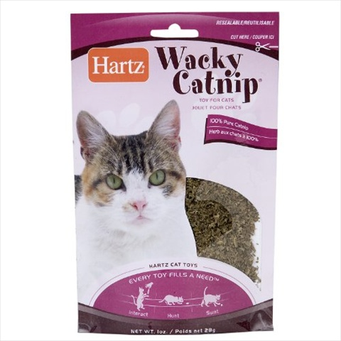 Hartz Catnip Wacky