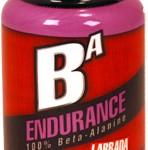 ba_endurance_ws