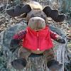 singing-moose-th
