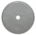 "Usa Sports By Troy Barbell 20 Lbs Standard 1"" Plate In Gray"