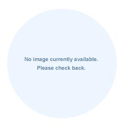 Fila Sweetspot Flirty Skort: Fila Women's Tennis Apparel