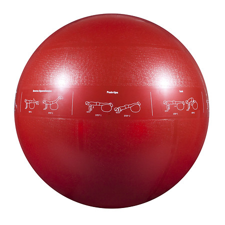 GoFit 1200lb Professional Core Stability Ball 65 cm - 1 ea
