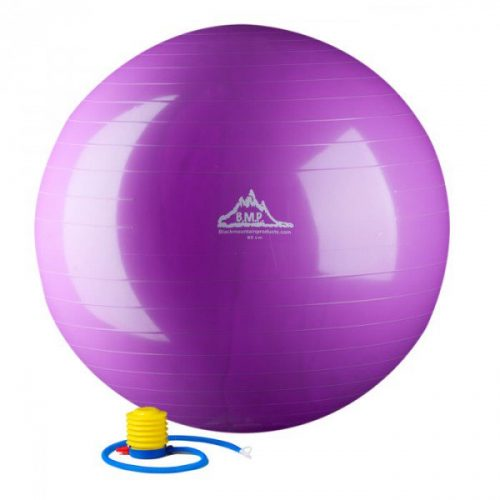 55 cm. Static Strength Exercise Stability Ball Purple