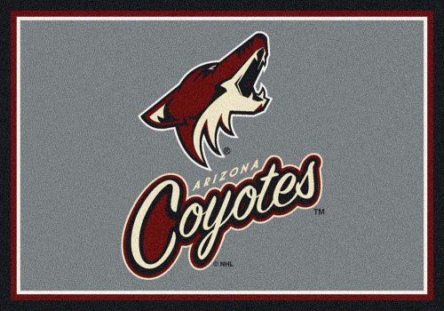 "Arizona Coyotes 3' 10"" x 5' 4"" Team Spirit Area Rug"