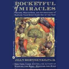 Blackstone Audio 9781549172373 Pocketful of Miracles Audio Book