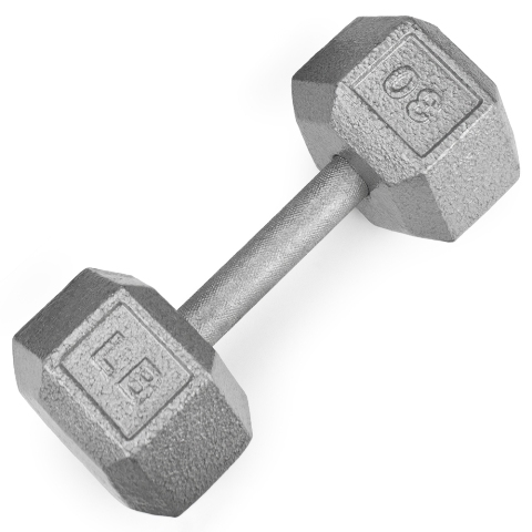 BrybellyHoldings SWGT-307 30 lbs. Cast Iron Hex Dumbbell
