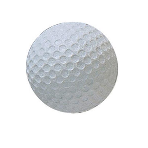 Champion Sports RSGB 1.75 in. Rhino Skin Molded Foam Golf Ball White