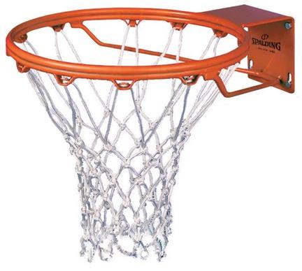 Roughneck Gorilla II Fixed Basketball Goal from Spalding