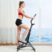 Sunny Health & Fitness SF-1115 Folding Climbing Stepper Step Machine