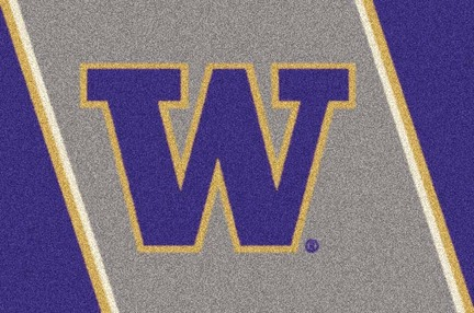 "Washington Huskies 3'10"" x 5'4"" Team Spirit Area Rug"