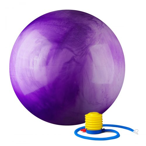 Black Mountain Products 65cm MC Purple Ball 65 cm Static Strength Exercise Stability Ball with Pump Multi-Colored Purple